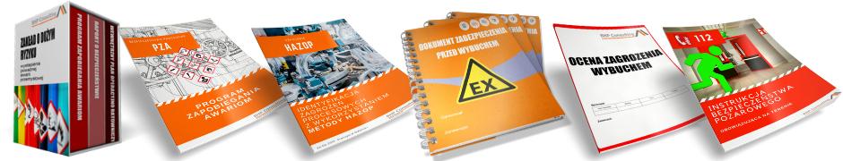 Dokumentacja - BHP Consulting